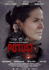 Potosí online (2013) Español latino descargar pelicula completa