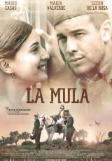 La mula online (2013) Español latino descargar pelicula completa