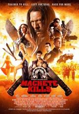 Machete Kills online (2013) Español latino descargar pelicula completa