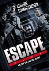 Plan de escape online (2013) Español latino descargar pelicula completa
