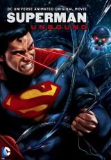Superman: Unbound online (2013) Español latino descargar pelicula completa