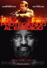 Protegiendo al enemigo online (2012) Español latino descargar pelicula completa