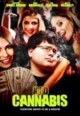 Kid Cannabis online (2014) Español latino descargar pelicula completa