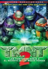 Las tortugas ninjas 2 online (1991) Español latino descargar pelicula completa
