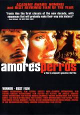 Amores perros online (2000) Español latino descargar pelicula completa