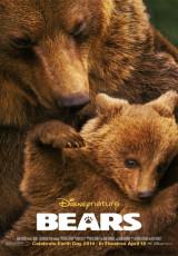 Bears online (2014) Español latino descargar pelicula completa