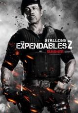 Los mercenarios 2 online (2012) Español latino descargar pelicula completa