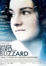 Pajaro blanco de la tormenta de nieve online (2014) Español latino descargar pelicula completa