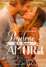 Perdona si te llamo amor online (2014) Español latino descargar pelicula completa