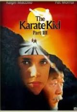 Karate Kid 3 online (1989) gratis Español latino pelicula completa