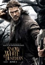 Blancanieves y la leyenda del cazador online (2012) Español latino descargar pelicula completa