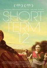 Short Term 12 online (2013) Español latino descargar pelicula completa