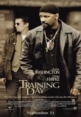 Training Day online (2001) Español latino descargar pelicula completa