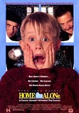 Solo en casa 1 online (1990) Español latino descargar pelicula completa