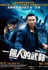 Kung Fu Jungle online (2014) Español latino descargar pelicula completa