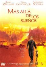 Más allá de los sueños online (1998) Español latino descargar pelicula completa