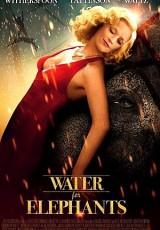 Agua para elefantes online (2011) Español latino descargar pelicula completa
