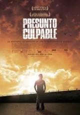 Presunto culpable online (2009) Español latino descargar pelicula completa
