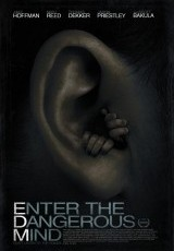 Enter the Dangerous Mind online (2013) Español latino descargar pelicula completa