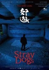Stray Dogs online (2013) Español latino descargar pelicula completa