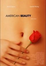 American Beauty online (1999) Español latino descargar pelicula completa