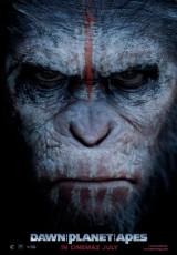 El amanecer del planeta de los simios 2 online Español latino (2014) descargar pelicula completa