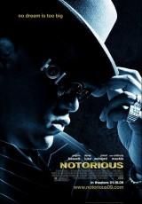 Notorious online (2009) Español latino descargar pelicula completa