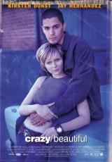 Amor loco / Amor prohibido online (2001) Español latino descargar pelicula completa
