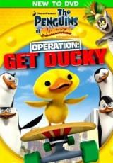 Los Pingüinos de Madagascar: Operation Get Ducky online (2012) Español Latino descargar pelicula completa