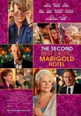 El nuevo exótico Hotel Marigold online (2015) Español latino descargar pelicula completa
