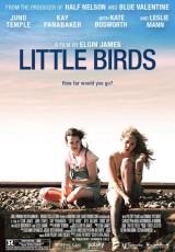 Little Birds online (2011) Español latino descargar pelicula completa