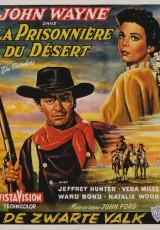 Centauros del desierto online (1956) Español latino descargar pelicula completa