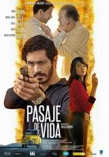 Pasaje de vida online (2015) Español latino descargar pelicula completa