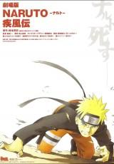 Naruto Shippuden la muerte de naruto online (2007) Español latino descargar pelicula completa