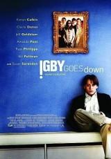 La gran caída de Igby online (2002) Español latino descargar pelicula completa