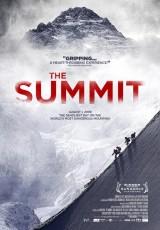 The Summit online (2012) Español latino descargar pelicula completa