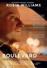 Boulevard online (2014) Español latino descargar pelicula completa
