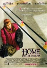 A casa por vacaciones online (1995) Español latino descargar pelicula completa