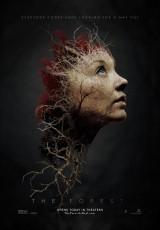 El bosque de los suicidios online (2016) Español latino descargar pelicula completa