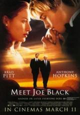 ¿Conoces a Joe Black? online (1998) Español latino descargar pelicula completa