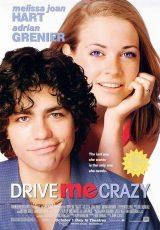 La chica de al lado online (1999) Español latino descargar pelicula completa
