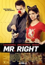 Mr. Right online (2015) Español latino descargar pelicula completa