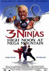 Tres pequeños ninjas 4 online (1998) Español latino descargar pelicula completa