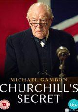 Churchill's Secret online (2016) Español latino descargar pelicula completa
