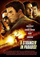 A Stranger in Paradise online (2013) Español latino descargar pelicula completa