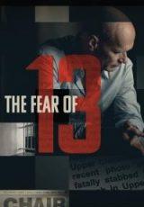The Fear of 13 online (2015) Español latino descargar pelicula completa
