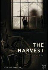 The Harvest online (2013) Español latino descargar pelicula completa