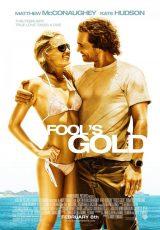 Fool's Gold online (2008) Español latino descargar pelicula completa