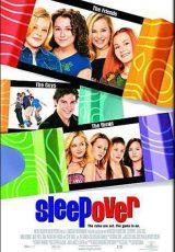 Sleepover online (2004) Español latino descargar pelicula completa