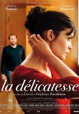 La delicadeza online (2011) Español latino descargar pelicula completa